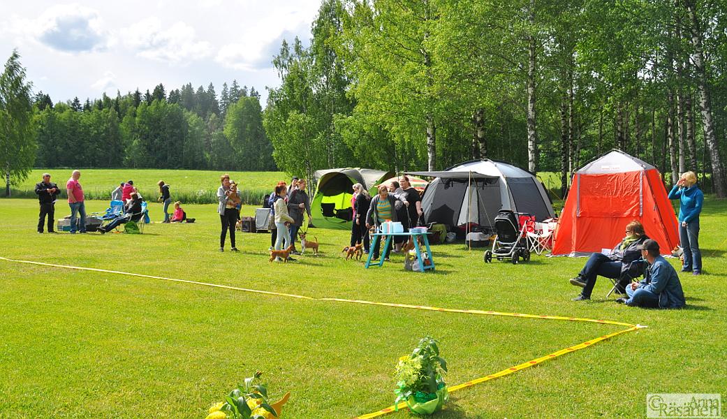 Open Show 11.06.2016 Kuva Anna Räsänen